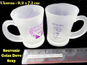 souvenir gelas promosi murah meriah cantik